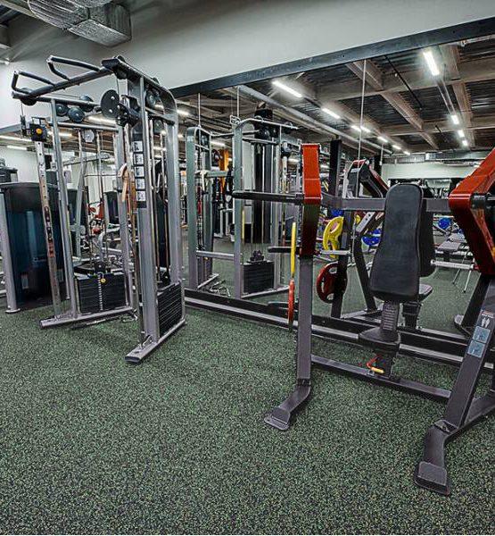 EcoStep Fitness 15 (толщина 4мм ширина 1,5м) травянистый