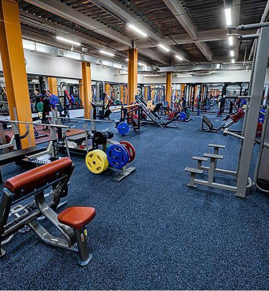 EcoStep Fitness 15 (толщина 4мм ширина 1,5м) синий