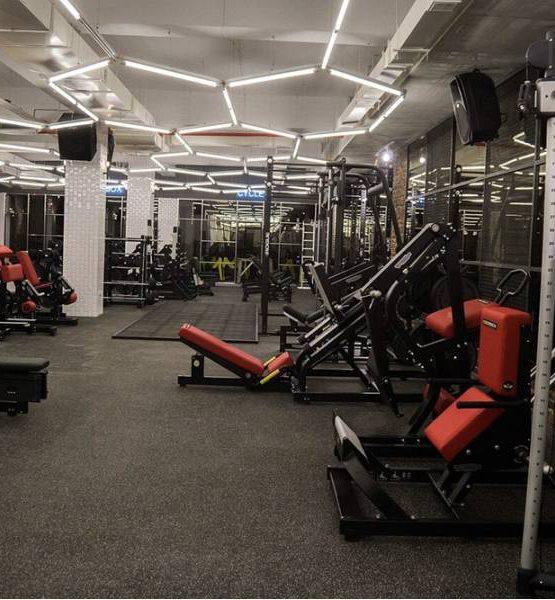 EcoStep Fitness 15 (толщина 4мм ширина 1,5м) серый