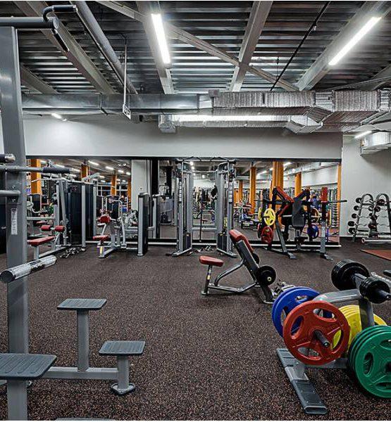 EcoStep Fitness 15 (толщина 4мм ширина 1,5м) терракотовый